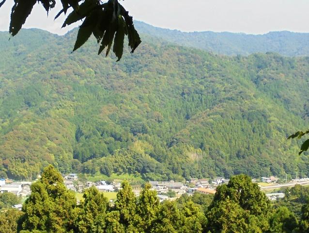 大川原高原9.jpg
