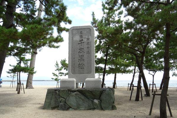 大浜公園前11.JPG