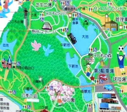 播磨中央公園10.jpg
