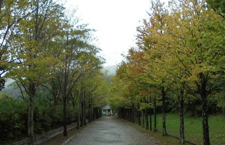 日本へそ公園17.jpg