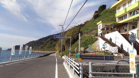 灘黒岩水仙郷7.jpg