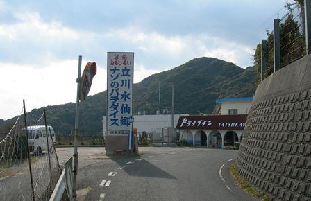 立川水仙郷.jpg
